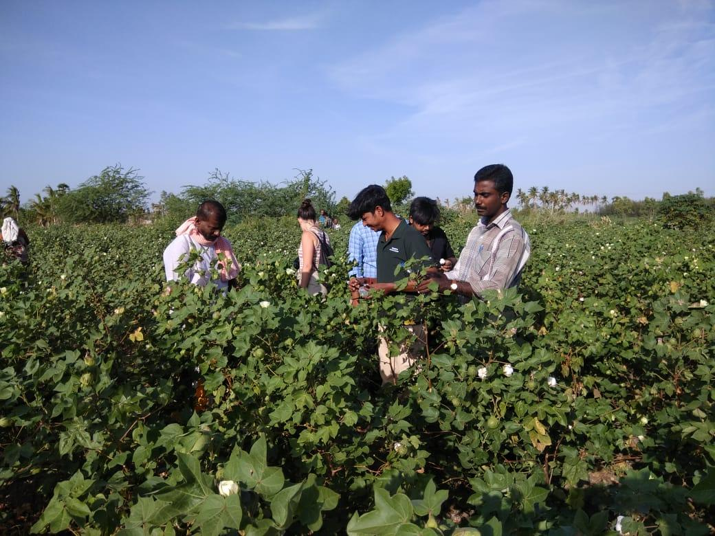 Training on Sustainable Agriculture